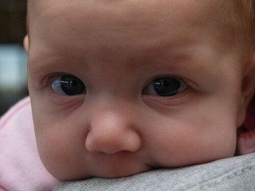 Bébé sur les épaules de ses parents