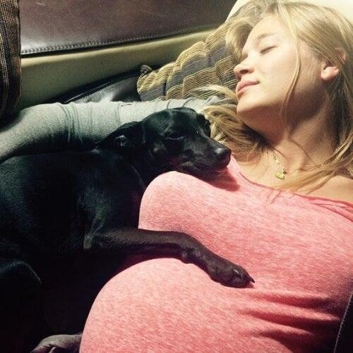 Une femme enceinte endormie avec son chien pendant la grossesse