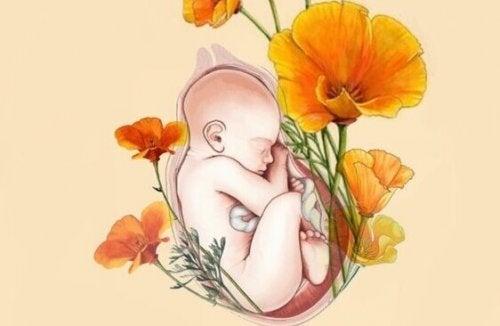 Maman, tu es mon habitat, ma nourriture et mon oxygène