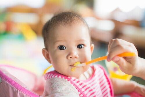 Le régime alimentaire des bébés doit être composé de lait maternel principalement et de purées de fruits et légumes simples