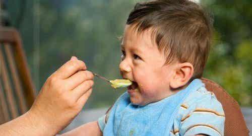 Les premiers repas du bébé : incorporer des solides dans son alimentation