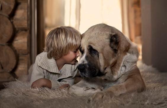 Cultivez chez votre enfant la valeur de l'honnêteté.