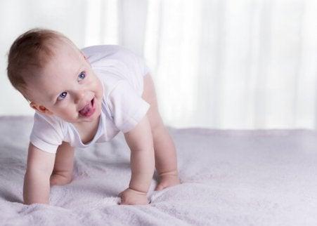Les percentiles du bébé se situent entre 3 et 97