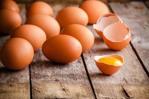 Les omelettes pour les enfants sont simples et rapides à cuisiner et enchantent les petits comme les grands