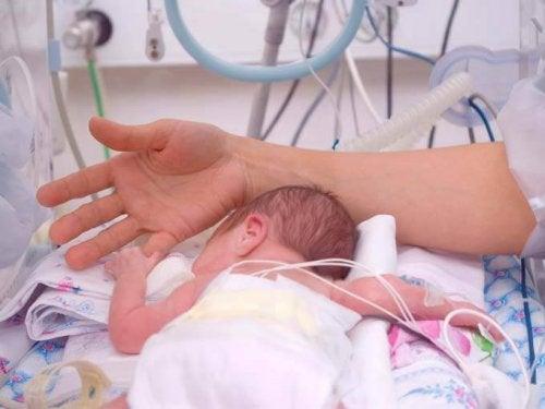 La chaleur humaine pour les bébés prématurés