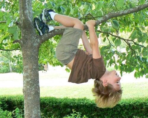 les racines comme cadeau pour enfant