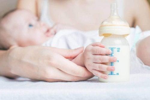 chauffe-biberon et lait maternel