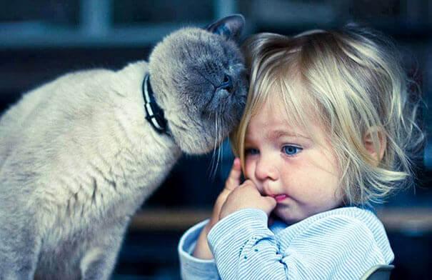 Les animaux pour enfants leur permettent de développer de bonnes valeurs et de s'ouvrir au monde des êtres vivants.