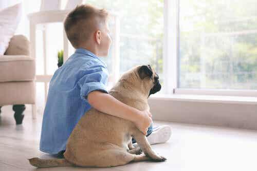 Les meilleurs petits chiens pour enfants