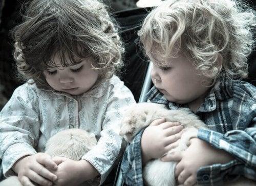 Le best of des animaux pour enfants