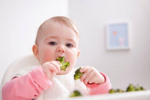Un bébé mange seul du brocolis