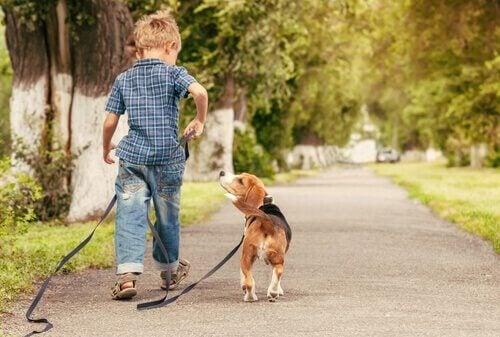 enfant aime les animaux