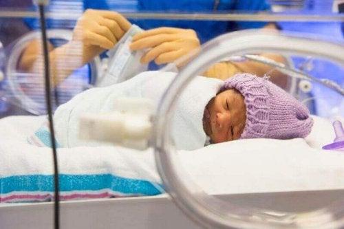 incubateur bébé
