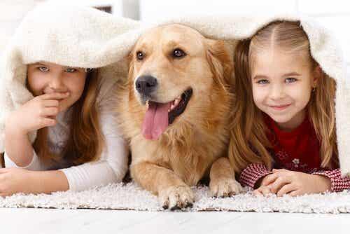 Pourquoi les enfants aiment tant les animaux ?