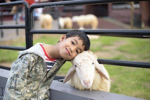 Pourquoi les enfants aiment tant les animaux? Parce qu'ils sont complices et protecteurs.