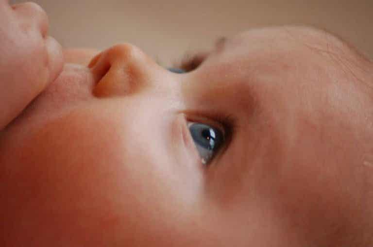 Qu'est-ce qui influence la génétique du bébé ?