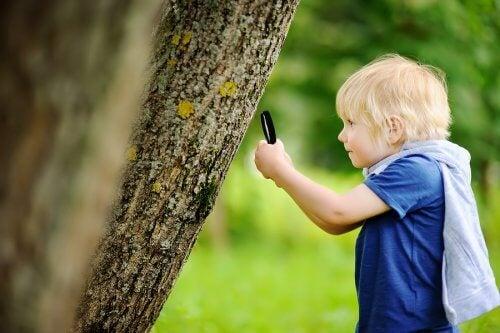 Le but de l'éducation en plein air est que les enfants soient en contact le plus possible avec la nature.