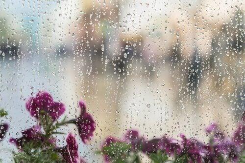 jeux pour les jours de pluie