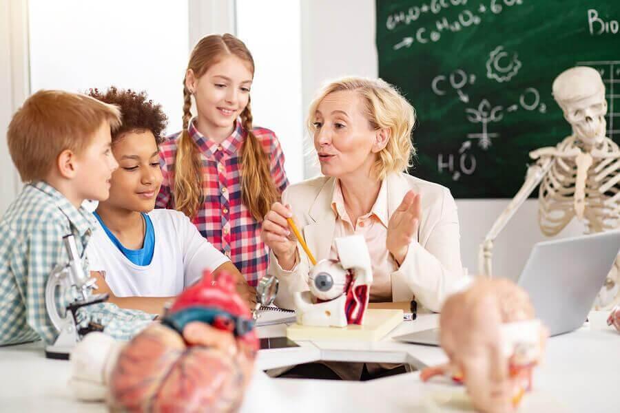 l'apprentissage des enfants