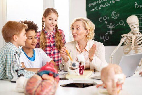 La neuroéducation est la discipline qui s'occupe de comprendre le fonctionnement du cerveau afin d'optimiser l'apprentissage dans les salles de classe.