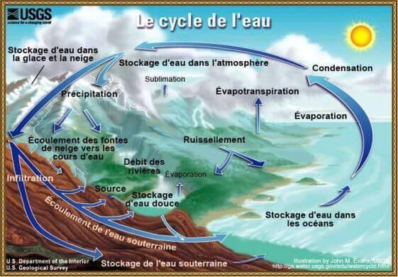 Expliquer le cycle de l'eau