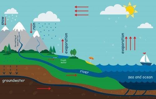 Comment expliquer le cycle de l'eau aux enfants ?