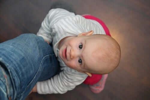 bébé accroché à la jambe d'un de ses parents
