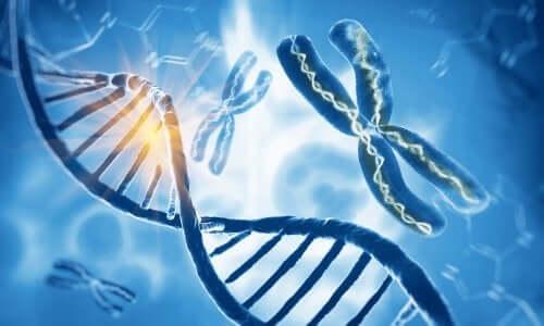 Des chromosomes sur fond bleu.