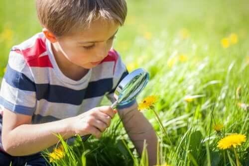 Un enfant regarde avec une loupe
