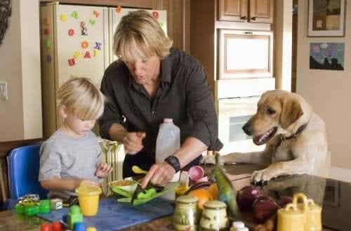 Des films qui enseignent aux enfants l'amour des animaux