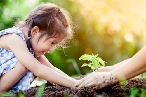 l'apprentissage de la photosynthèse par l'expérience