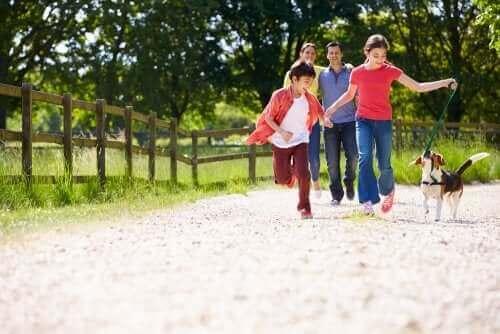 famille promenant un chien