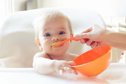 premiers aliments solides de bébé