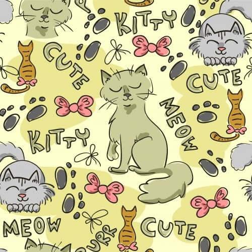 Une sélection de 4 livres infantiles autour du chat