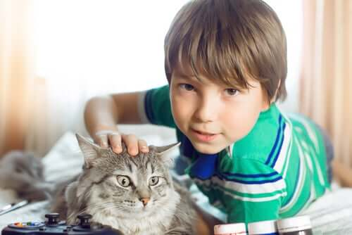 Un garçon avec son chat