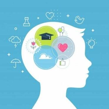 Compétences socio-émotionnelles chez les enfants