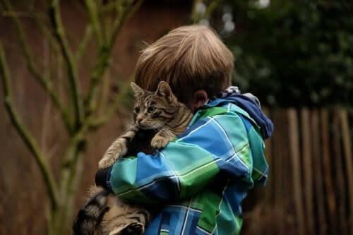 amitié entre un enfant et son chat