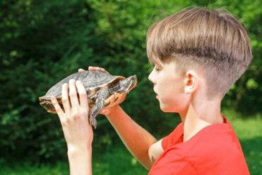 Les effets de la technique de la tortue sur l'estime de soi