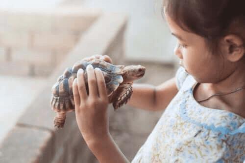 fille avec une tortue