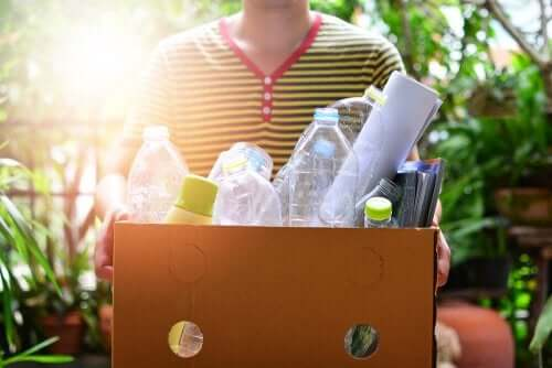 Des travaux manuels avec des bouteilles en plastique