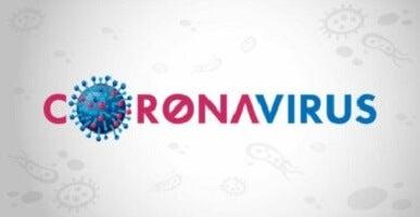 Coronavirus : tout ce que les parents doivent savoir