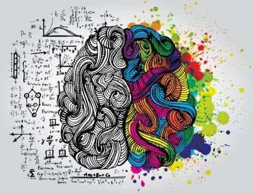 L'école de l'Intelligence, par Augusto Cury