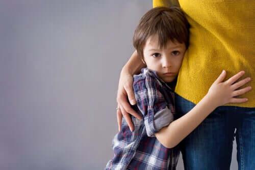 Un jeune garçon collé aux jambes d'un adulte.