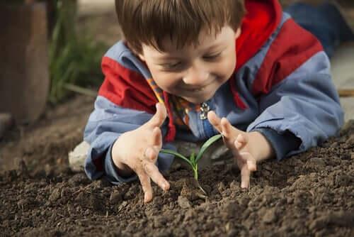 enfant souriant devant une plante qui pousse