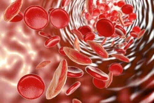 Les traitements contre l'anémie pendant l'adolescence.