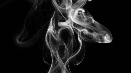 La fumée du tabac.