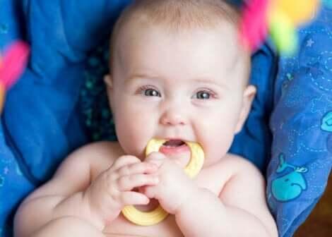 Un bébé qui mord son jouet.
