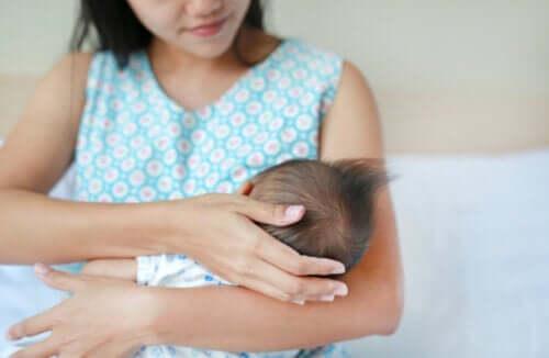 Les graisses du lait maternel: quelques données