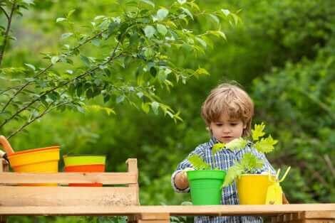 Un enfant avec des pots de fleurs.
