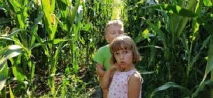 La crise des sept ans chez les enfants